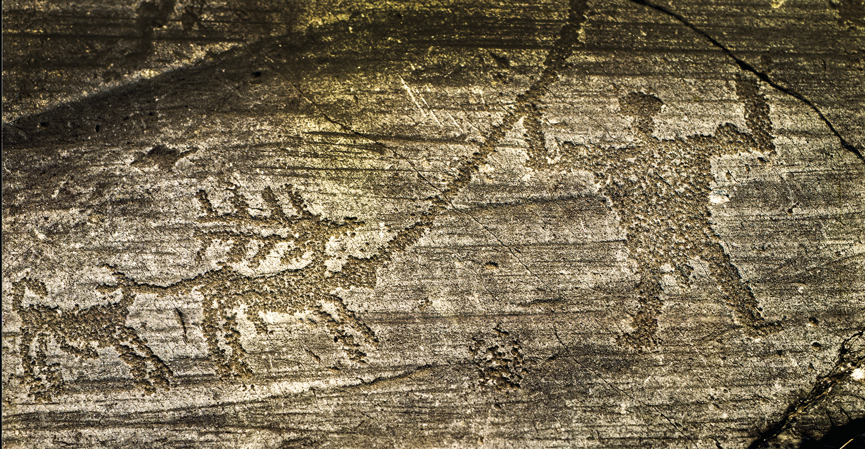 Rock drawings in Valle Camonica